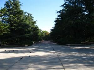 Парк Гагарина