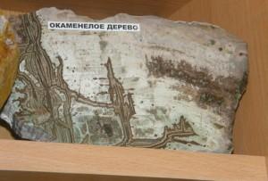 muzej-kamnya-3