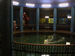 akvarium-Sevastopol-4