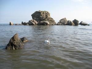 Крабий остров
