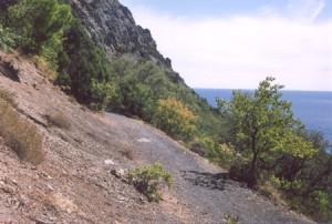 Пушкинская тропа или дорога никуда